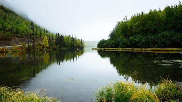 Сибирские ученые создали сорбент для ликвидации последствий экологических катастроф